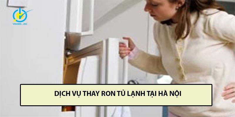 dịch vụ thay ron tủ lạnh tại Hà Nội